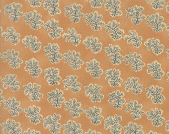 Moda Collections Preservation Quilt Fabric 1/2 Yard By Howard Marcus - Tan 46236 14