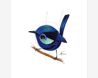 Blue Wren Bird Print A5 Splendid Fairy Wren