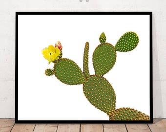 Cactus Print, Cactus Flower Print, Cactus Flower Decor, Cactus Wall Art, Cactus Decor, Botanical Print, Botanical Wall Art; Trophical Print,