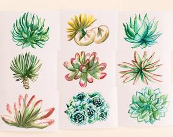 Succulents Print Set, Set of 9, Horizontal