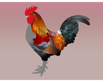 The A4 cock illustration printed on Fine Art paper / Rooster print illustration on Fine Art paper
