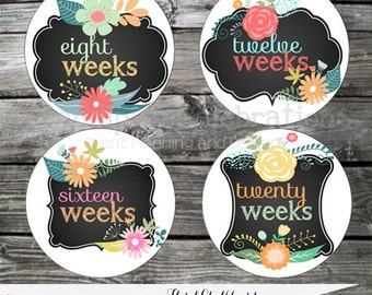Chalkboard Flower Pregnancy Stickers, Weekly Milestone Stickers Baby Bump Stickers Belly Stickers Baby Shower Maternity Photo Prop