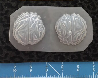 Brain molds