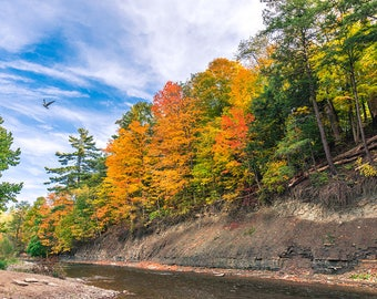 Autumn at Credit River