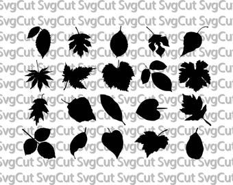 Fall Leaf SVG Bundle, Fall Leaf clipart, Fall Leaves cut files, Fall svg files for silhouette, files for cricut, svg, dxf, cuttable design