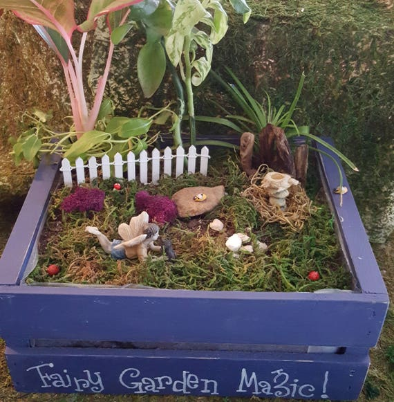 Fairy Ross and Winston the Dog Fairy Garden Kit - (Plants and Soil not incl.)