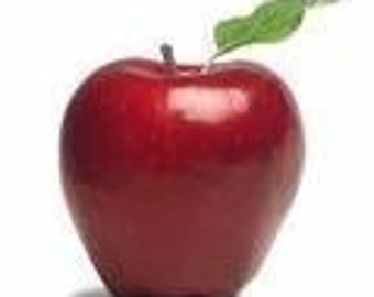 All Natural Lip Balm RED DELICIOUS APPLE