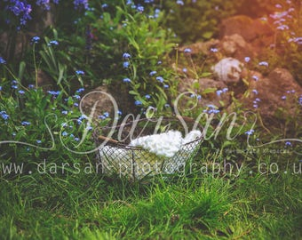 Digital background for photographers