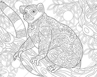 Madagascar Lemur. 3 Coloring Pages. Animal coloring book pages for Adults. Instant Download Print