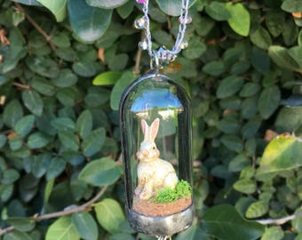 Bunny in a glass cloche