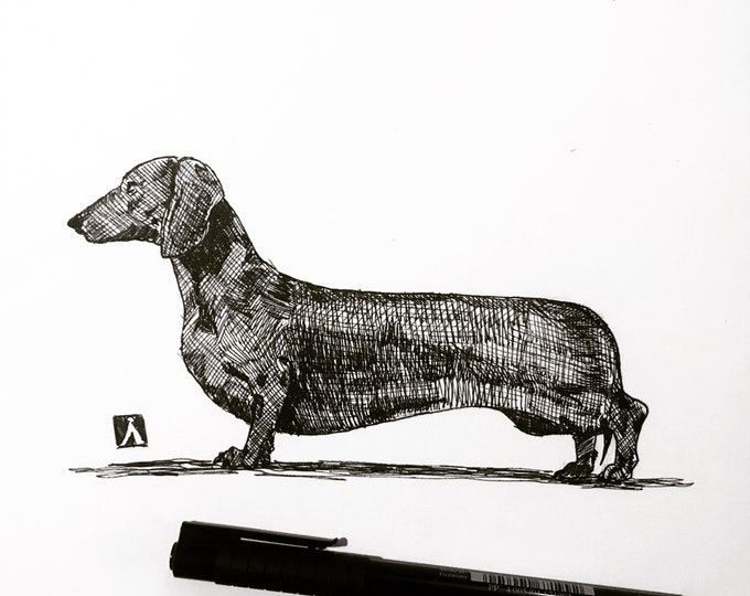 Original Pen And Ink Drawing of dachshund Wiener Dog (prints also available)