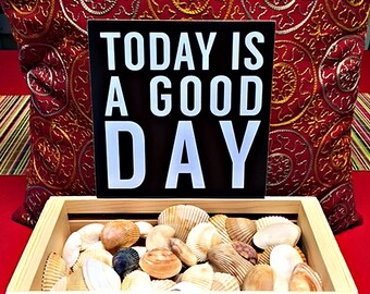 Today is a Good Day............For Shells!