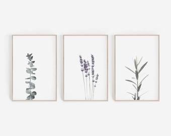 Set of 3 Prints,Farmhouse Decor,Botanical Print,Wall Decor,Eucalyptus Print,Lavender Print,Watercolour Lavender,Printable Wall Art,Art Print