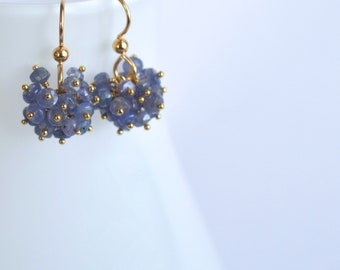 Claudia - Tanzanite and Gold Filled Earrings || Periwinkle Blue Earrings || Blue Cluster Dangles