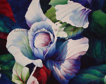 Kauai Cabbage- signed limited edition watercolor print