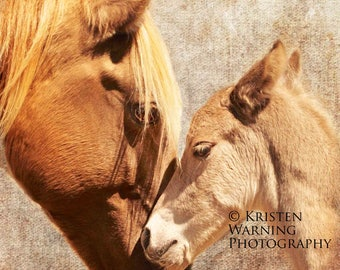 Textured Backgrounds, Horses, Equine Art, Fine Art, Photography, Mare Loves Her Foal, Foals