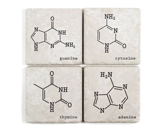 DNA Nitrogenous Bases, Tumbled Ceramic Coasters, adenine, thymine, cytosine, guanine
