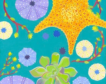 Sea Star.Succulent.Sea Urchin