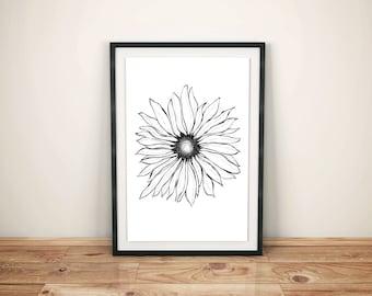 Daisy Print - 11x14