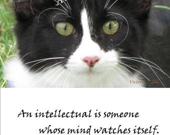"Digital Download Photography, ""Mind Watching ""  Inspirational Quotes, Photography, Printable Wall Art"