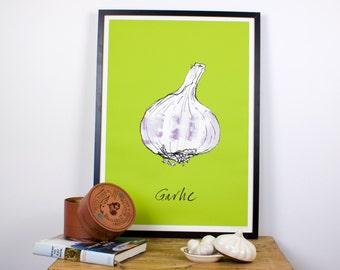 High Quality Garlic kitchen wall print - Giclee print