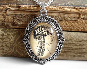 Anatomical Brain Necklace in Silver - Brain and Spine - Antique Anatomy Print Pendant