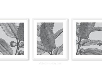 Art mural, feuille d'Art mural, Art de mur végétal, feuilles estampes, décor de feuilles de mur, ensemble de 3 tirages, gris feuille Wall Art, les couleurs personnalisées, Aldari Art