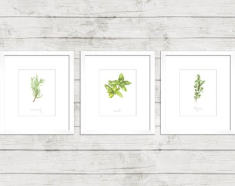 Herb Print | (Mint, Rosemary + Thyme) | Set of 3
