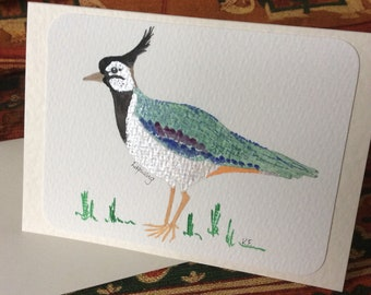 Lapwing Card , Lapwing Art, Bird Greetings Card, Bird Lovers Card, Original Watercolour Bird Card