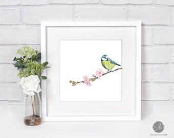 Sitting Pretty Blue Tit British Bird Framed Print Artwork Picture