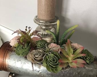 Sooo succulent