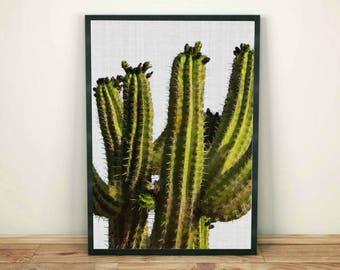 Cactus Print, Cactus Wall Art Decor, Succulent Print, Cactus Poster, Cactus Printable, Cactus Modern Print, Cactus Photography Digital Print