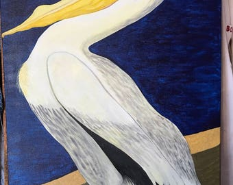 Daydreaming Pelican