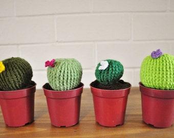 Crochet Cactus - Round