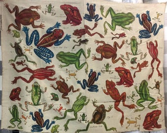 "LAST PIECE 40 inches  ""Frogs"" by Design Legacy print fabric"
