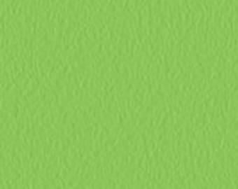 20 sheets - Citrus Green Tissue Paper