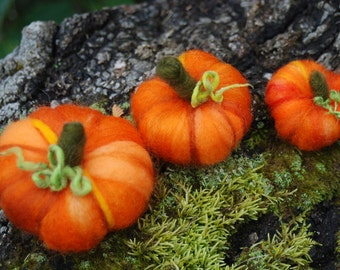 DIY Needle Felted Pumpkin Kit, With Premade Forms Fall Decorations, Thanksgiving Halloween Decorations