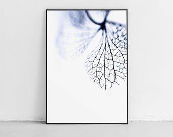 Abstract Art, Wall Art, Art Prints, Wall Decor Bedroom, Printable Wall Art, Printable Art Hydrangea Print Art Print 4x6 Art Print Blue Print