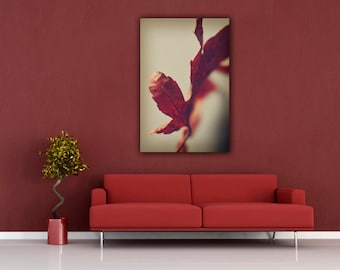 Leaf Photography, Living Room Wall Art, Bedroom Decor, Minimalist Modern  Still Life Photograph