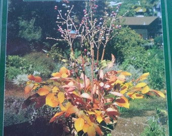 Everlasting Plants and Arrangements