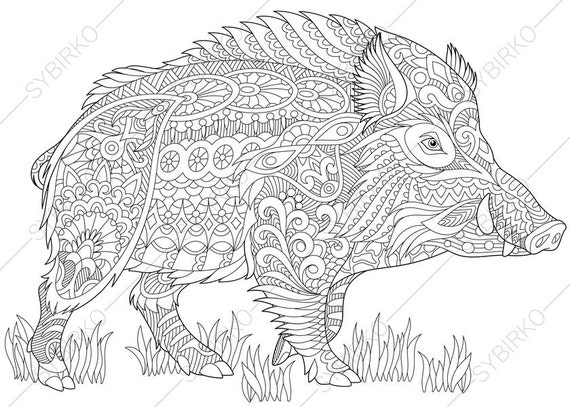 2 Coloring Pages Animal Book For
