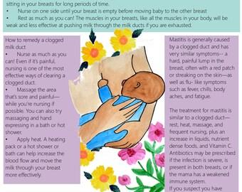 Breastfeeding Education Slides/ Set 2/ Slides 5-10/ Lactation Consultant/ PDFs/ Midwife/ Doula/ Birth Education