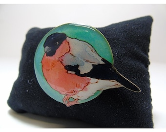 Spring Hedgerow Bullfinch Brooch
