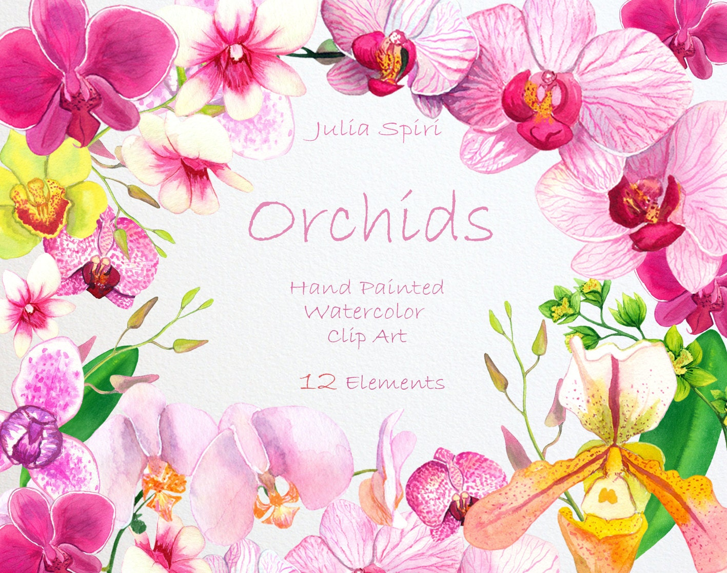 Watercolor Flowers Clipart Orchids Hand Painted Floral Clip