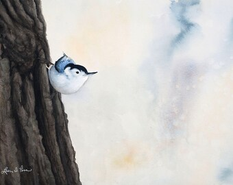 Nuthatch Watercolor Print from an Original Painting by Laura Poss, Three sizes available, Bird Art Giclee Reproduction, Nuthatch Painting