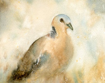 Dove Painting, Original Watercolor painting 8x10inch