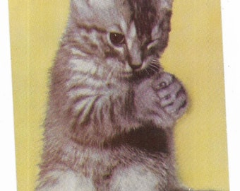 Vintage Greetings Cats Kittens Postcard Oh Pretty Please Gray Striped Tabby USED