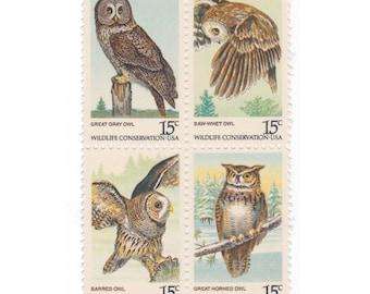 Pack of 12 Unused Vintage Postage Stamps - 1978 15c American Owls - Item No. 1760a