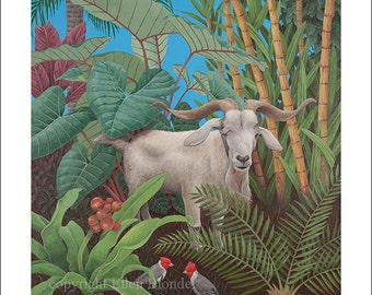 Kauai Goat with Cardinals, Small Giclee Print