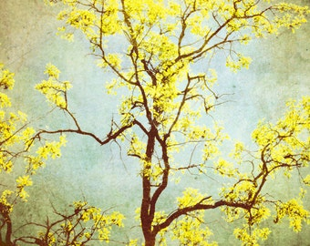 Tree Photograph Yellow Photography Living Room Decor Golden Brown Yellow Print Modern Nature Decor 8x8